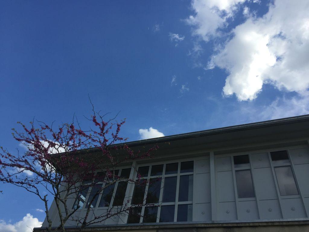 verandas 32